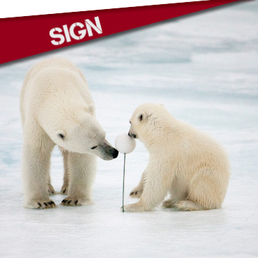 SIGN : SAVE THE ARCTIC!