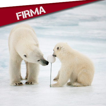 FIRMA: ¡SALVEMOS EL ÁRTICO!